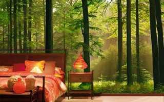 Фотообои для спальни – особенности выбора