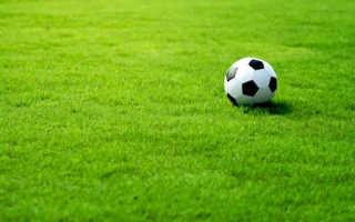 Преимущества использования спортивного газона