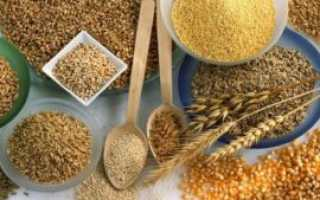 Польза зерновых злаков