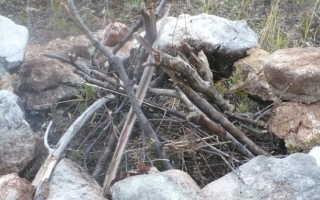 5 способов развести огонь, который должен знать каждый бэкпакер